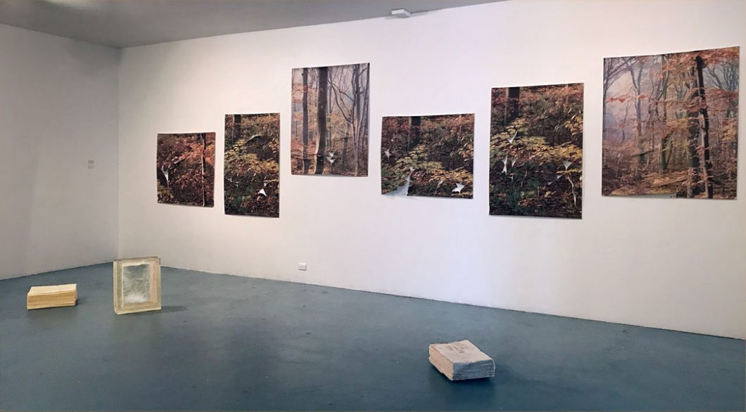 installation-view