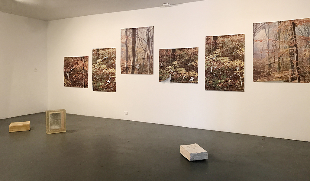 installation-view